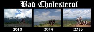 badcholesterol20132015