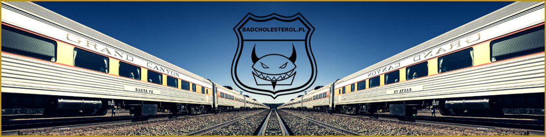 BADCHOLESTEROL.PL